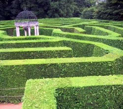 The Maze Lives In The Mind Of Those Who Have Belief, Opinion Or Faith In Fantasies